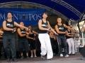 stadfest2008127